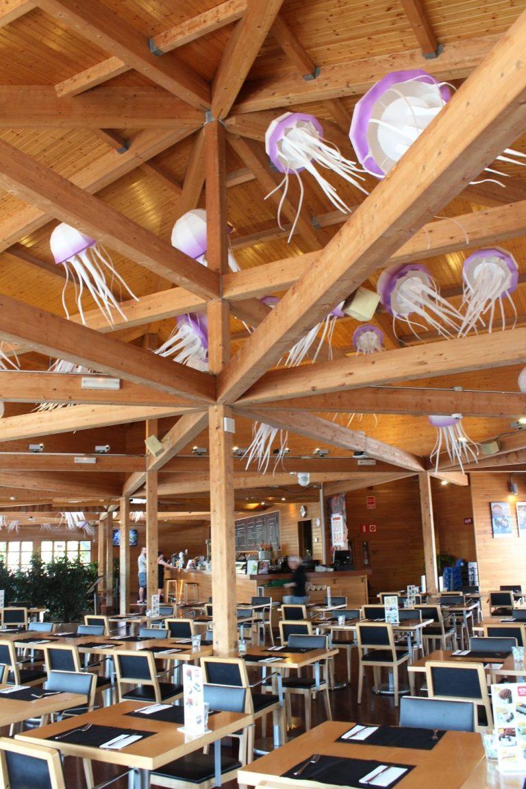 Oceanografic_medusas_paper art_empaperart_restaurante_oceanos7