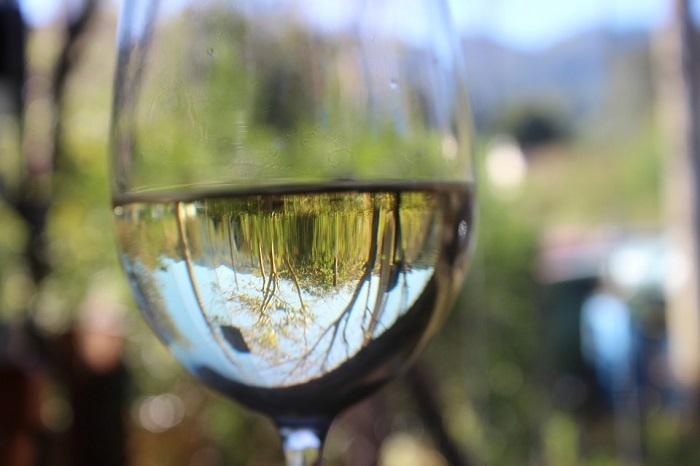 Mitos del Vino blanco