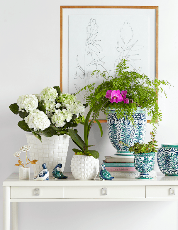 aerin-lauder-williams-sonoma-home-goods-collection