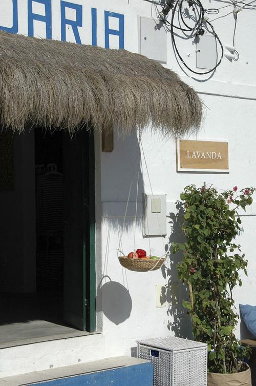 Lavanda1